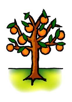 FruitBearingTree