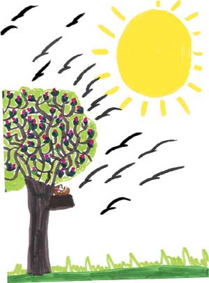 Treesun_1